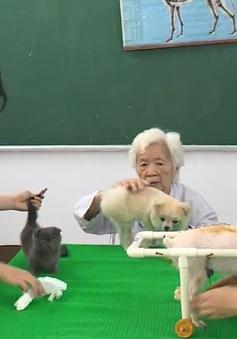 Cụ bà gần 90 tuổi làm phòng khám thú y miễn phí trong suốt 9 năm