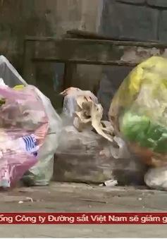 Xây dựng thành phố thông minh - Câu chuyện phạt nguội từ hành vi vứt rác thải