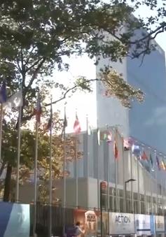 Hoạt động cuối cùng của Việt Nam trong tháng chủ tịch Hội đồng Bảo an