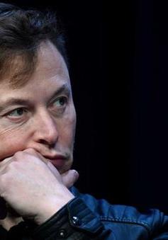 Elon Musk mất ngôi giàu số 2 thế giới