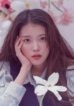 IU tặng 500 triệu won cho những người có hoàn cảnh khó khăn trong ngày sinh nhật