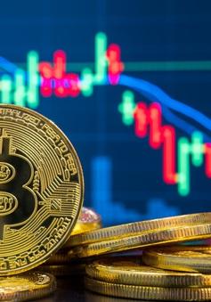 Những lần Bitcoin rớt giá gây chấn động