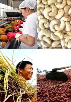 Xuất khẩu nông sản tăng trưởng ấn tượng 5 tháng đầu năm