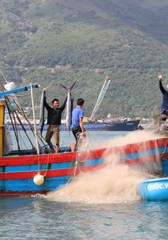 Chủ tịch nước gửi tặng 5.000 lá cờ cho các ngư dân vùng biển đảo
