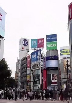 Nhiều công ty, trường đại học lớn tại Nhật Bản chuẩn bị tiêm vaccine