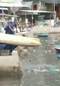 Giảm rác thải ra biển nhờ thay đổi nhận thức cộng đồng