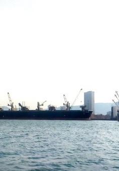 7 thuyền viên mắc COVID-19 trên tàu nước ngoài cập cảng Quy Nhơn