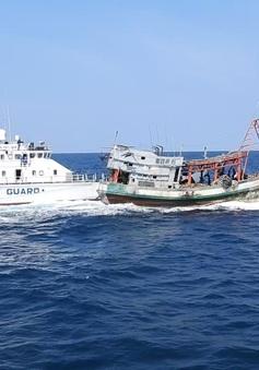 Cảnh sát biển truy đuổi bắt giữ tàu cá che mờ biển sồ đi đánh bắt hải sản về
