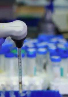 Thế giới nỗ lực nghiên cứu thuốc điều trị COVID-19