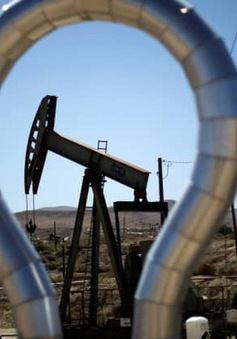 Giá dầu sẽ tăng tới đâu trong nửa cuối năm nay?
