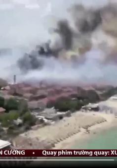 Nắng nóng gây ra 300 vụ cháy rừng ở miền nam Italia chỉ trong nửa ngày