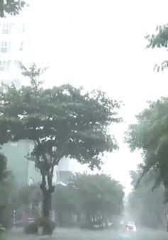Đà Nẵng khẩn trương phòng chống bão số 5