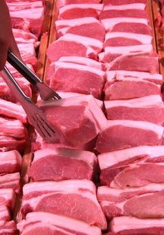 Thị trường thịt lợn châu Âu bên bờ vực sụp đổ