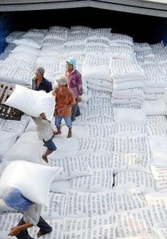"""Khơi thông """"luồng xanh"""" để giải tỏa ách tắc khó khăn cho thị trường lúa gạo"""