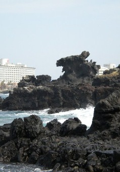 Đến đảo Jeju ngắm... đá đen