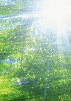 Nắng thủy tinh