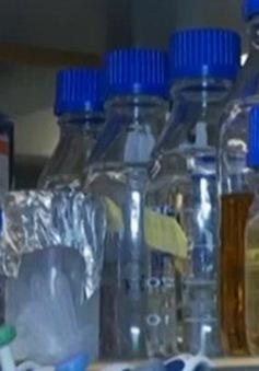 Phần Lan phát triển vắc-xin chống mọi loại dị ứng