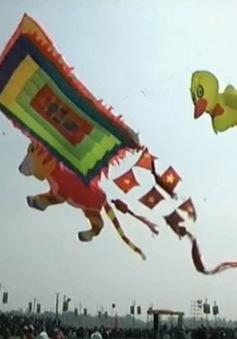 Festival Diều quốc tế tại Ấn Độ