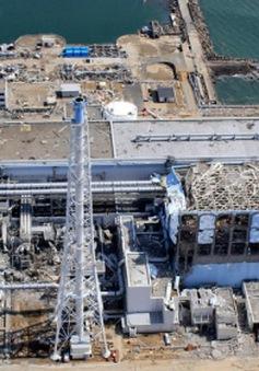 Nhật Bản: Bơm nhầm hơn 200 tấn nước nhiễm phóng xạ