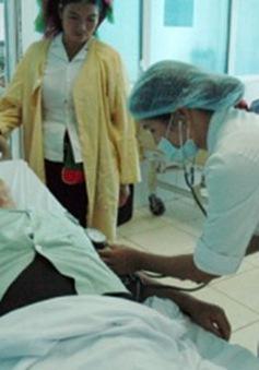 Ăn bọ xít đen, 1 người tử vong, hơn 20 người cấp cứu