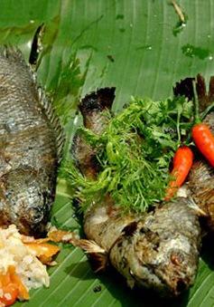 5 bài thuốc hữu hiệu từ cá rô đồng