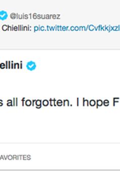 Giorgio Chiellini chính thức tha thứ cho Luis Suarez