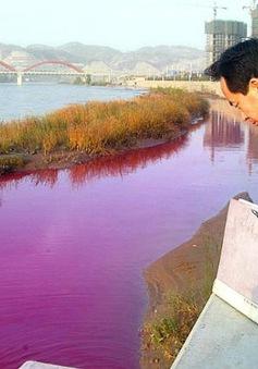Trung Quốc: Nhiều nhà máy hóa chất xả thải ra sông