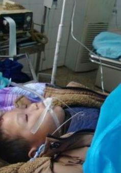 Giẫm đạp lên nhau, 4 học sinh Trung Quốc bị chết