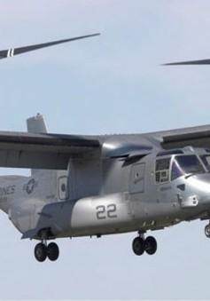 """Mỹ và Nhật tập trận chung với máy bay """"siêu"""" cơ động"""