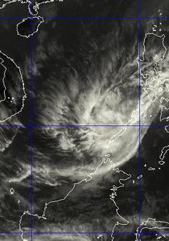 Bão Kajiki suy yếu thành áp thấp nhiệt đới