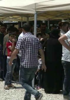 Người dân Syria ở nước ngoài đi bầu cử Tổng thống sớm