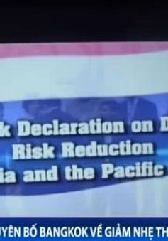 Tuyên bố Bangkok về giảm nhẹ thiên tai