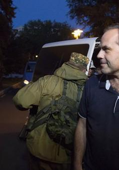 Ukraine: Lực lượng chống Chính phủ trả tự do cho quan sát viên OSCE