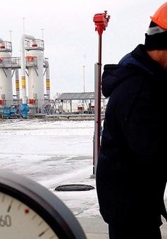 Ukraine nỗ lực tự sản xuất khí đốt