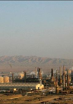 Người dân Iraq thiếu nhiên liệu trầm trọng