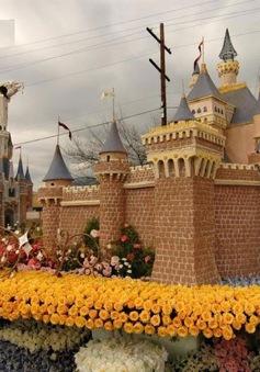 Lễ hội hoa kỷ niệm ngày độc lập tại Ấn Độ