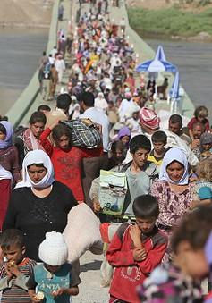 LHQ ban bố tình trạng khẩn cấp về cuộc khủng hoảng nhân đạo ở Iraq