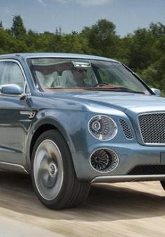 """SUV siêu sang Bentley Falcon được """"cấp phép"""""""