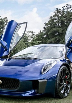 Những hình ảnh đẹp nhất tại Wilton Classic & Supercars 2013