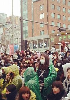 """Hàn Quốc ra mắt """"con đường K-Pop"""""""