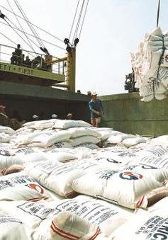 Tháng 5, 6: Đặt mục tiêu xuất khẩu 1,5 triệu tấn gạo
