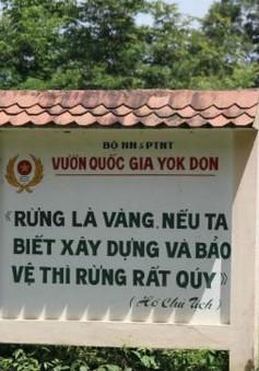 Quyền Giám đốc vườn Quốc gia Yok Đôn bị kỷ luật Đảng