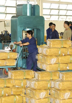 Xuất khẩu của Việt Nam sang Ấn Độ tăng 32%