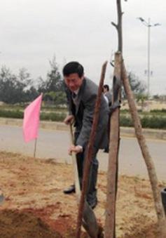 Quảng Bình ra quân trồng cây đầu năm Giáp Ngọ