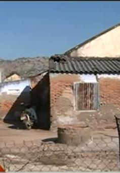 Nước mặn bủa vây, người dân Ninh Thuận lao đao