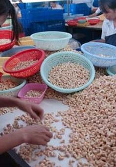 Nhập khẩu vật tư, nông sản tăng 19%