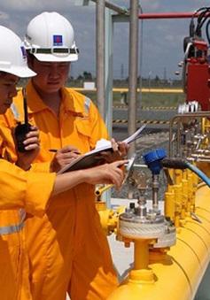 Khắc phục sự cố đường ống dẫn khí cho nhà máy Điện, Đạm tại Cà Mau