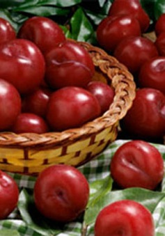 Những hoa quả cần hạn chế trong mùa hè