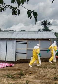 Sierra Leone kêu gọi sự trợ giúp quốc tế chống lại dịch Ebola
