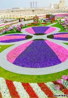 Kỳ diệu công viên hoa tự nhiên lớn nhất thế giới